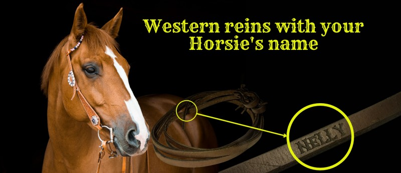 Western reins with your horsie's name
